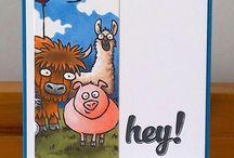 Herd / by Dee Tollaksen