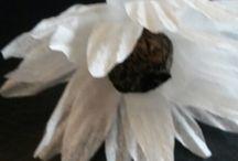 Dekoráció, virágok. Saját készítés. / Asztali és fali díszek el nem hervadó virágokból.