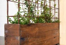 garden's ideas