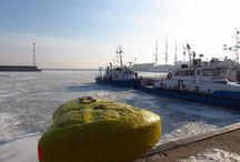 Zima w Gdyni / Końcówka zimy, trochę lodu i śniegu :)