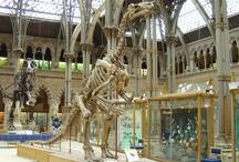 Museus da Inglaterra