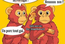 Blagues Nulles