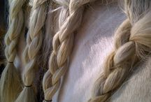 Horse Manes / My horse manes, favorite horse manes, and more...