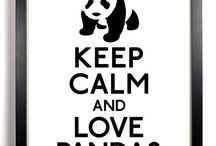 Pandy <3