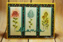 Cards SU 4