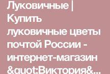 ВСЕХ КУПИМ
