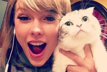 Celebrity Cat Lovers / Here you will find all the celebrities who love cats! As if you needed another excuse to stalk them...