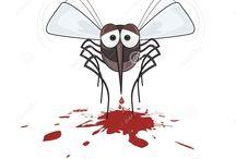 Stop Zika in Backyard Ponds - The Guppy Eats Mosquitos
