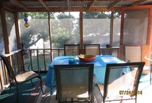 Our Cabin Overlooking Lake Texoma / Snippets of our day-to-day lives living on the banks of this 90,000-acre lake in North Texas. PIcture stories about Capt. Rob, me and our three fur babies, Bella, Nick and Roger / by Jacqui Barrett-Poindexter