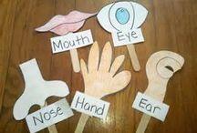 Κατασκευές 5 senses