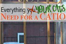 Kissa ulko häkit