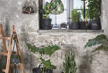 Budding greens  2016 / Let your home be filled with plants before nature has caught up. Glass, stone materials and greens create sharp contrasts and harmony.