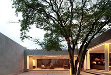 HOMES with trees generally preferred when buying. / Statistics show 10% to 15% price increase where properties have mature trees.