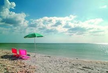 My Ft Meyers and Sanibel Bucket list / by Paula DeVivo