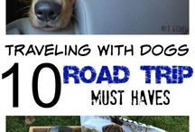 Dog Travel Tips / This board is all about dog travel. Dog travel tips, accessories, etc. can be found right here.