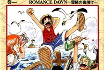 One Piece Covers