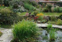 Garden/ Great Dixter