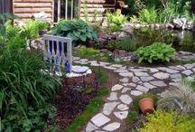 Gardening / by Ann Griffin