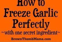 freezing fresh foods