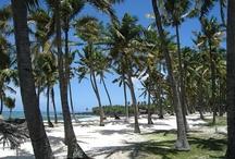 جزر القمر | The Comoros Islands