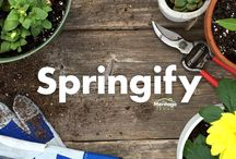Springify Your Home / Spring time means spring cleaning, brighter decor, and letting your home shine!