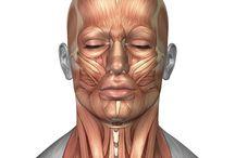 thicc neck tsuna