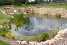 Piscinas naturales / Diseño de zonas de río para piscinas naturales