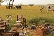 esprit safari