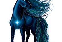 Howrse- moji koně se zlatým jablkem