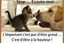 Cute ! ❤