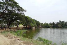 Biggest Pond in Odisha / Big Pond in Bhadrak
