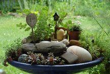 Fairy Garden / Fun for Mum...