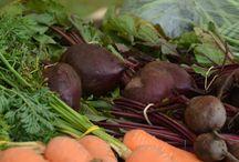 CT Grown Root Vegetables