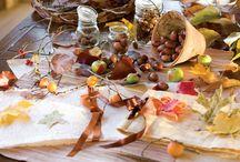 Autumn Ambience, Fall Beauty