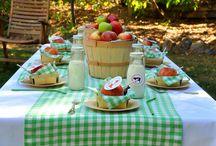 Farm Party Ideas / by Birthday in a Box