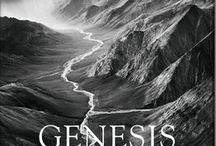 ~genesis~