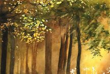 Bomen en Bossen