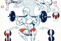 Workouts - Thigh