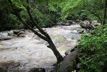 Smoky Mountain Rivers
