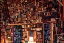 Living inside Books