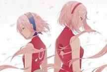 Sakura :3