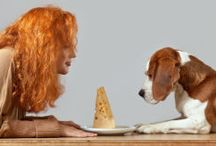 Canine Cuisine / Cooking and gardening with your four legged friends.