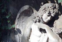 Cemetery / Olšanské hřbitovy