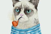 gato / by Gonzalo Castro