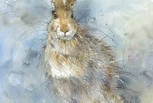 Hares / For everything harey!