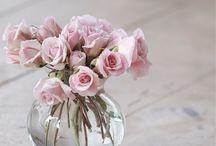 lovely flowers !