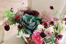 Ornamental Kale - Wedding floral decor / Ideas for Janine's wedding. -  Ornamental Kale.
