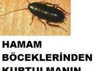 böcek ilacı