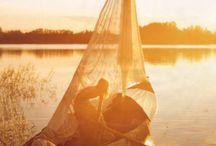 Adventure / by Andrea Voog-Petersson