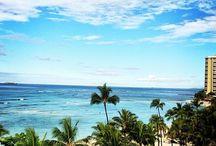 Honolulu, / príroda,živočíchy,zaujímavosti,fauna,flóra